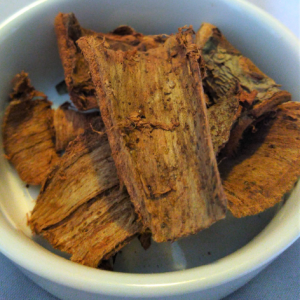 cuachalalate-bark-family's-favorite-foods