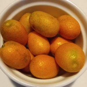 Kumquats-Family's-Favorite-Foods